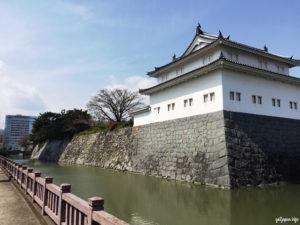 sakura,cherryblossoms,shizuoka,sunpu,castle,japan,go2japan,stonewall,triptojapan,moat,