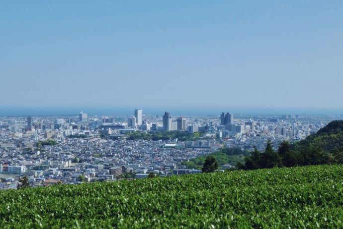cityscape, japan, shizuoka, greentea,